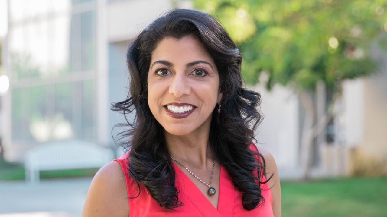 uc davis mechanical aerospace engineering computer science professor raissa dsouza