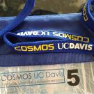 uc davis engineering cosmos statewide faculty executive director